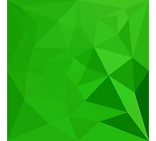 Bitter Lemon Green Abstract Low Polygon Background Photographic Print