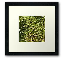 Fern Green Abstract Low Polygon Background Framed Print