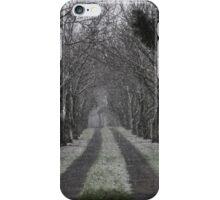 Path Through Winter iPhone Case/Skin