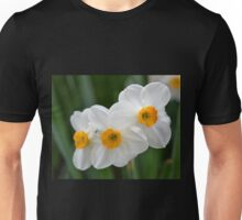 Three Miniature Daffodils Unisex T-Shirt