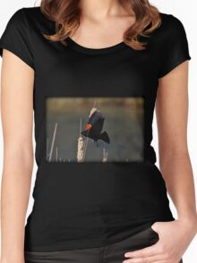 Red-Winged Blackbird Flight Women's Fitted Scoop T-Shirt