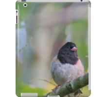 Little Bird in a Pastel Wonderland iPad Case/Skin