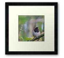 Little Bird in a Pastel Wonderland Framed Print