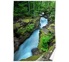 Avalanche Creek -- Glacier National Park Poster