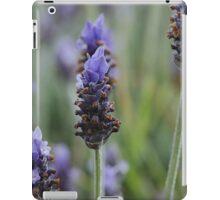 Lavender in Sorrento iPad Case/Skin