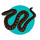 Southern Water Snake by BlueAsterStudio