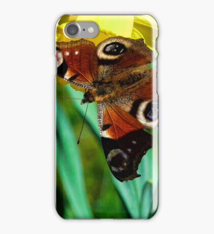 Daffodil with Peacock Butterfly iPhone Case/Skin
