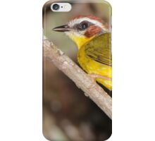 Rufous-capped Warbler iPhone Case/Skin