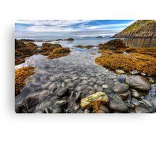 A Sea Full of Pebbles Canvas Print