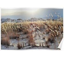 White Sands National Monument Photographic Print Poster