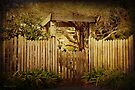Don't Fence me In by Elaine Teague