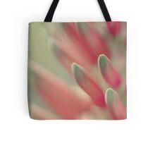71 Abstract Botanical Peachy Tote Bag