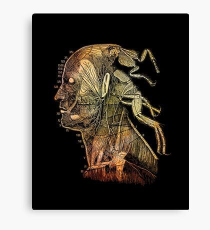 war of the flea Canvas Print