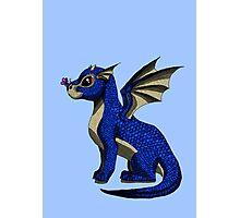 Sapphire the Baby Dragon Photographic Print