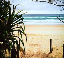 Salt Beach by Silken Photography