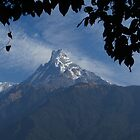Machapuchare, The Sacred Mountain by wiggyofipswich