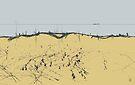 sandy shore. black sea by Nikolay Semyonov
