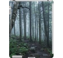 Forest in Mont Tremblant National Park iPad Case/Skin