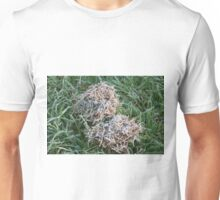 Frost covered dried grass Unisex T-Shirt