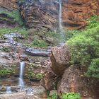 Rocks & Ferns At Wentworth Falls by Michael Matthews