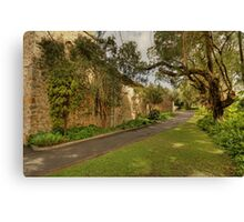 The Scenic Side Canvas Print