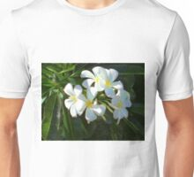Frangipani Dream Unisex T-Shirt