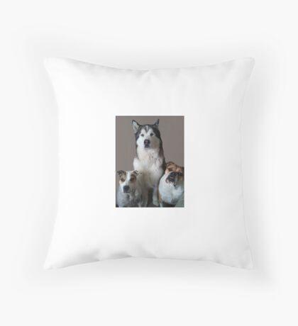 Bulldog, Alaskan Malamute, Staffordshire Bull Terrier Throw Pillow