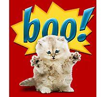 Dangerous Little Cat Photographic Print