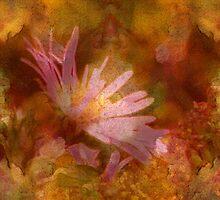 Fall Flowers by vigor