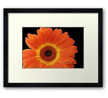 Or-an-ju beautiful! Framed Print