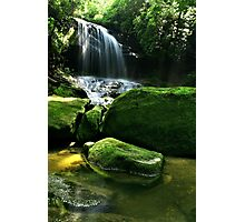 Afternoon in the Smokies Photographic Print
