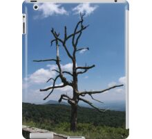 Mountain Scene iPad Case/Skin
