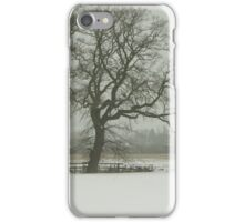 Snow scene iPhone Case/Skin