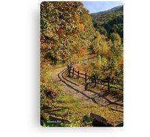 Broken Fence Rail on Quabbin Trail Canvas Print