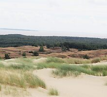 Sand Dunes of Lithuania by Ruta Rudminaite