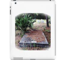 Princess Plantation 43 iPad Case/Skin