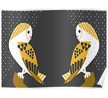 Barn Owls Poster