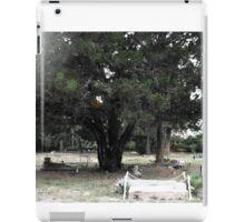 Princess Plantation 45 iPad Case/Skin