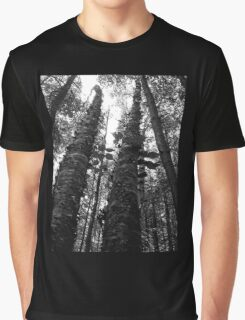 Birches in Black and White Graphic T-Shirt