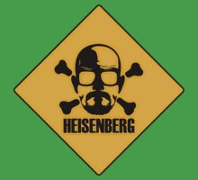 Breaking Bad - Heisenberg by eyevoodoo