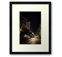 Hiding Under the Bridge Framed Print