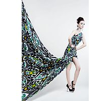 woman with long dress Photographic Print