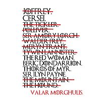 Arya's List Photographic Print