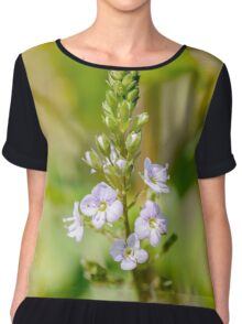 Veronica, Water Speedwell Flower Chiffon Top