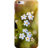 Myosotis Sylvatica iPhone Case/Skin