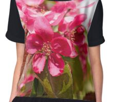 Paradise Apples Flowers Chiffon Top