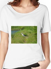 Black-winged Stilt Women's Relaxed Fit T-Shirt