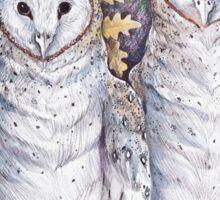 Twin Owls Sticker