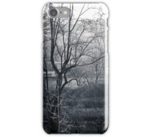 foggy morning in Paris iPhone Case/Skin