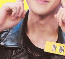 Pantone Sehun EXO Sticker